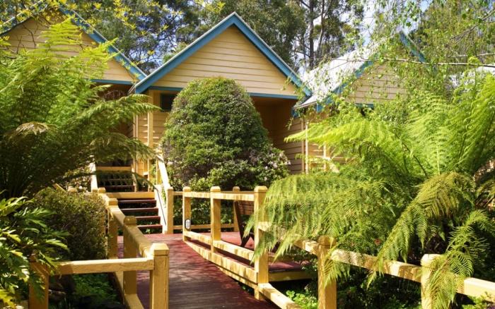 Heritagetraillodgeforest01
