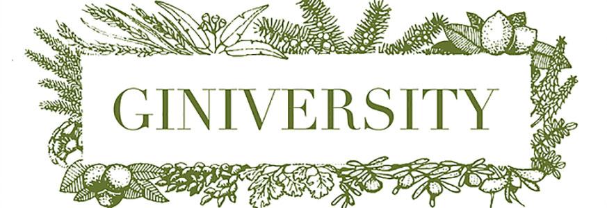 Giniversity300